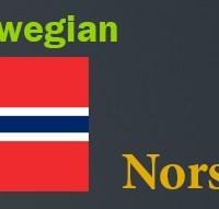 ziman rojikurd Norwegian