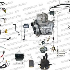 150cc Quad Bike Wiring Diagram Deer Cuts Roketa 250cc Atv Parts Free Engine Image