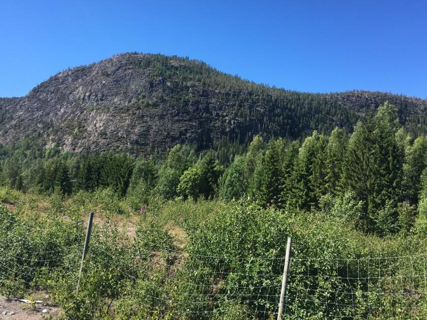 K-Rootsi-mäed.JPG