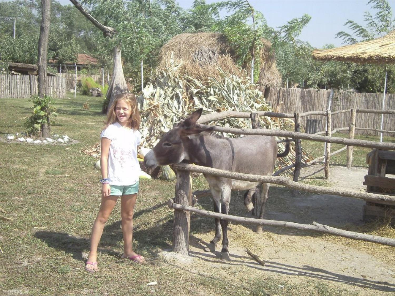 Banatske oaze mira: Kao da je vreme stalo i ostalo