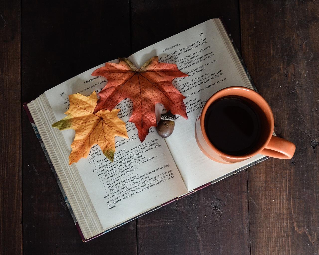 Družite se sa knjigom i u jesen: Kad zahladni, neka vas greje dobar roman