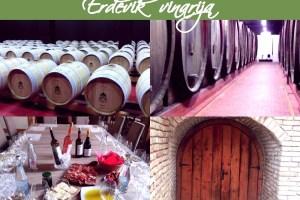 Uz papin blagoslov: Vinsko bogatstvo Erdevika