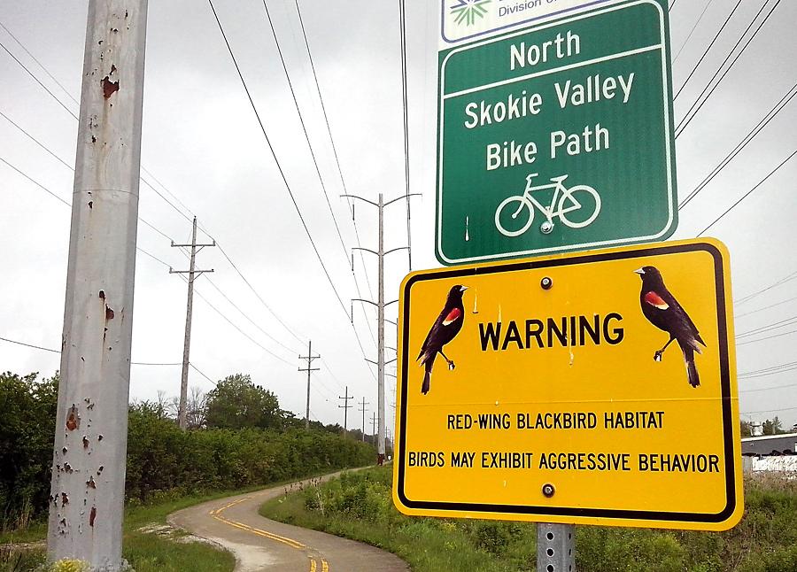 danger on the trail
