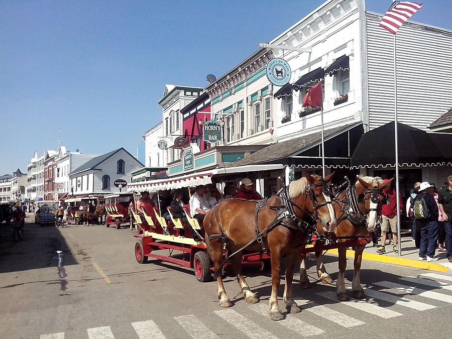 Carriage on Main Street