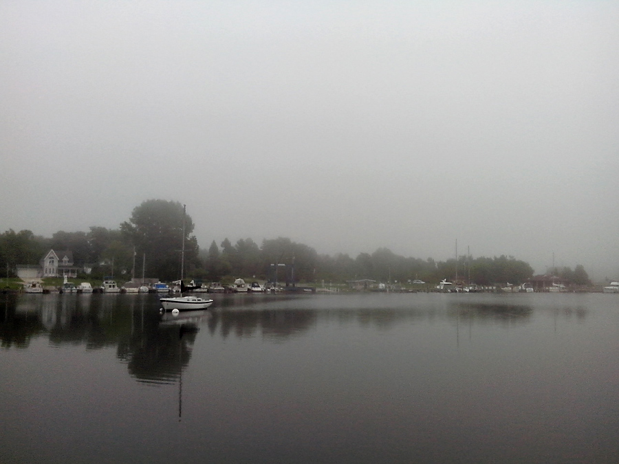 Arcadia harbor in the fog