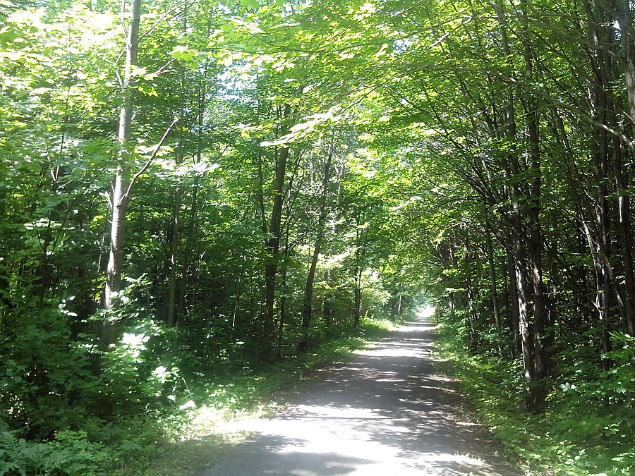 Hart-Montague Trail