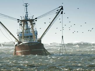 NOAA Improves Rule Measuring Fishery Waste