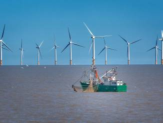 Fishing offshore wind can co-exist