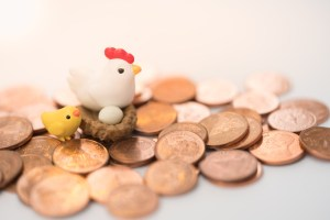 money chickens and credit eggs
