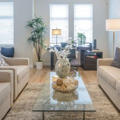 Ideas For Small Apartment Living Room Design Accent Walls In Decorating Senior Housing Idea Dividing Space With Rug Rightsize Your Furniture