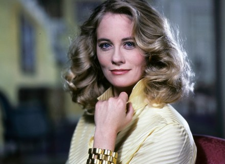 Image result for cybill shepherd