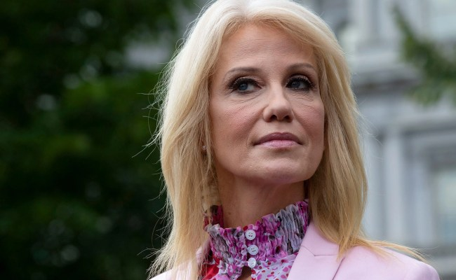 Kellyanne Conway Blasts Supporters Of Background Checks