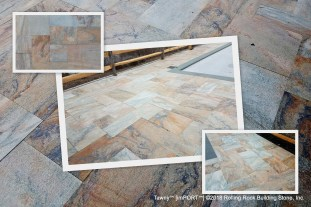 Tawny-collage-4-6