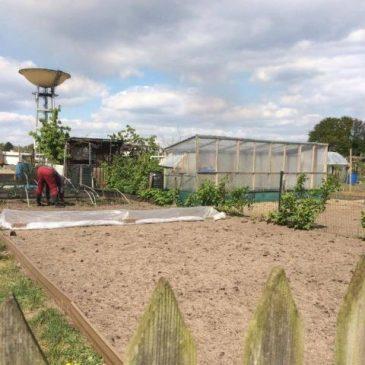 Tuinier met handen in de grond in volkstuintje