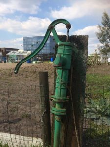 Waterpomp in volkstuintje met campus op achtergrond