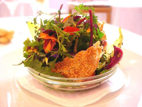 Ricette degli chef  vegetariane