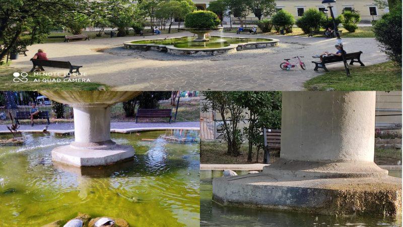 La fontana CON le tartarughe a Roma