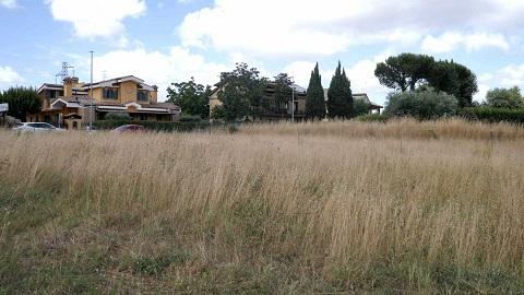 Il Campus scolastico di Casalotti/Selva Candida