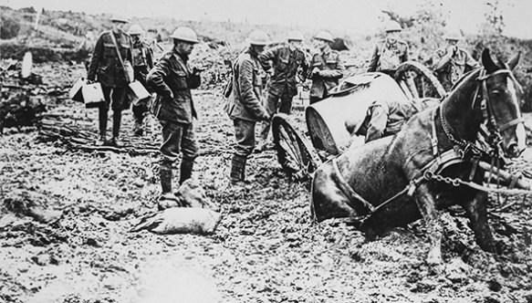 Chevaux première Guerre Mondiale Mémorial animaux de guerre à Paris
