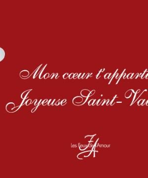carte à personnaliser saint valentin, les Feux de l'Amour MYTF1