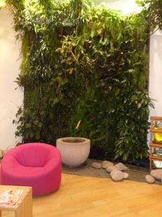 Mur végétal boutique weleda paris