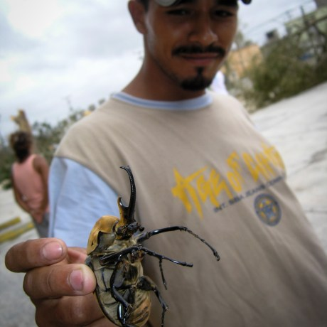 Luis Fernando with Beetle, 2005. Huracán: In Wilma's Shadow series. Archval pigment print, 15x11