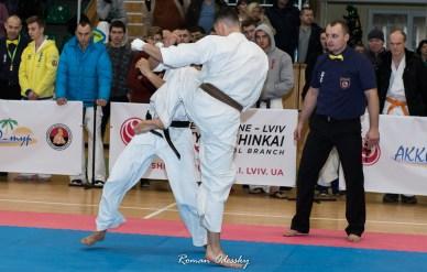 Кубок Украины по киокушинкай карате
