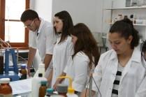 12 studenti in laborator