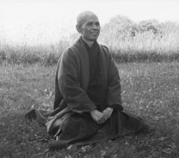 Thich Nhat Hanh: 'Don't just do something; sit there.'