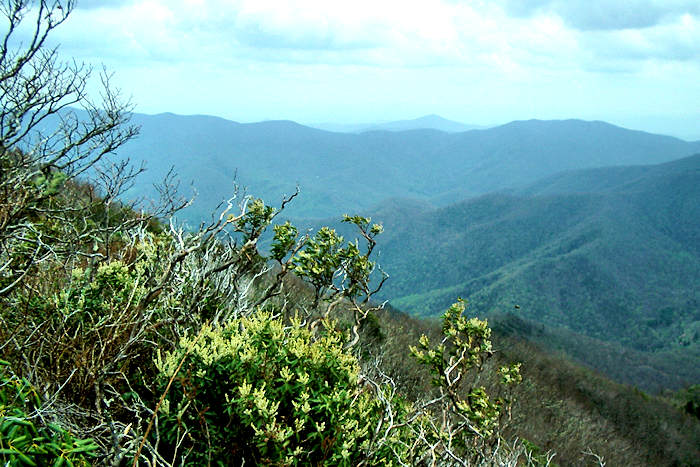 Free Scenic Fall Wallpaper Cold Mountain North Carolina Hiking The Summit Hike
