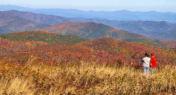 fall color forecast asheville