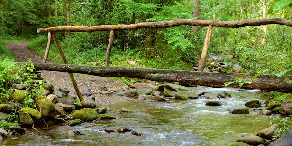 Leconte / bullhead trail trailhead: Top 10 Hikes Great Smoky Mountains North Carolina