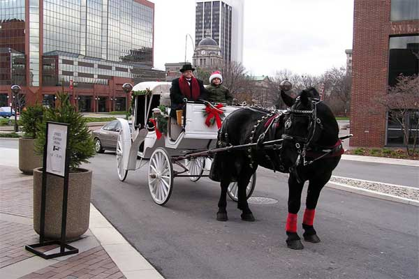 Carriage Ride in downtown
