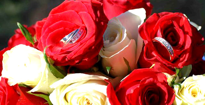 Roses with Wedding Rings