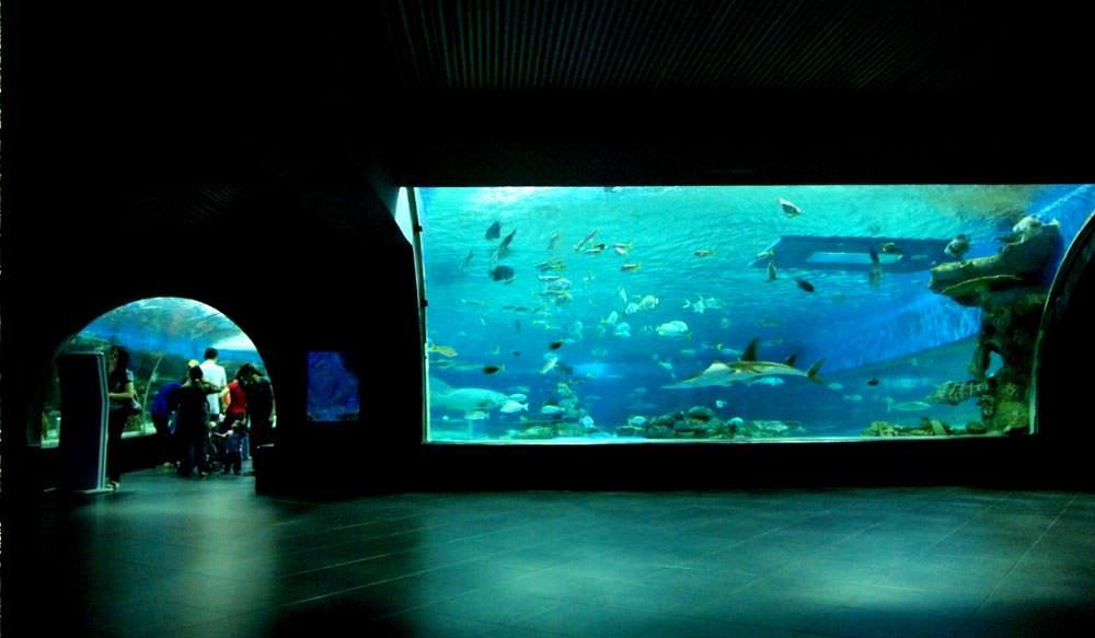 Manila Ocean Park in Philippines