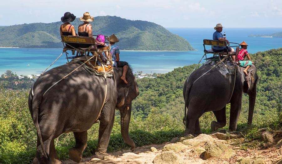 Siam Safari Nature Tours