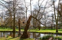 Royal Parks - for a romantic picnic