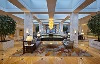The Dragon Romantic hotel