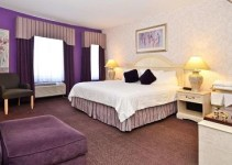 Jacuzzi suite in Best Western On The Avenue, Buffalo, New York