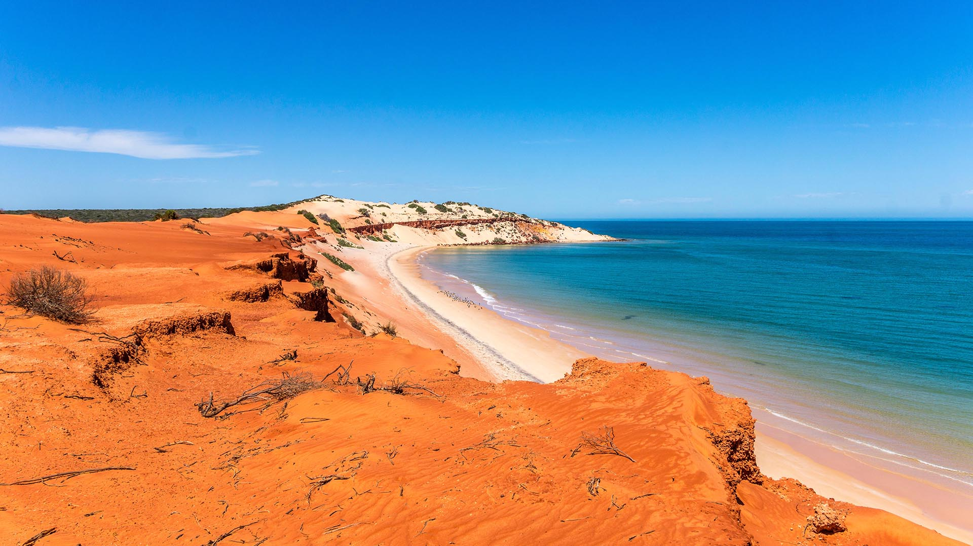 How to explore Australia by bus