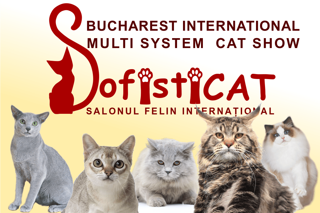 SALONUL INTERNATIONAL FELIN ROMEXPO