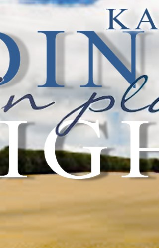 { Blog Tour Stop + Giveaway } Hiding in Plain Sight (The Silver Oak Series #2) by Kate Mathias