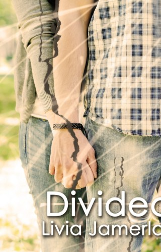 { cover reveal } Divided by Livia Jamerlan