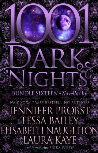 Release Blitz | 1001 Dark Nights Discovery Bundle