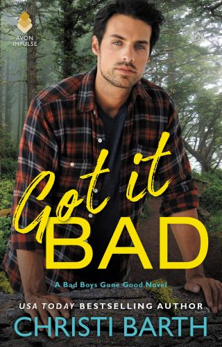 Review | Got It Bad by Christi Barth