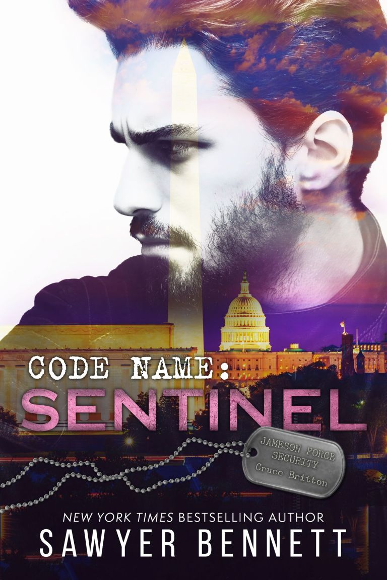 Review | Code Name : Sentinel by Sawyer Bennett