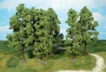 Photo of Életet adó energia – öleld át a fát
