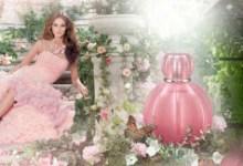 Photo of Készíts magadnak egy könnyű illatú parfümöt ,lépésről-lépésre