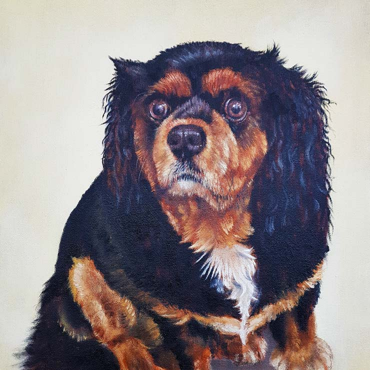 Leo - Pet Portrait