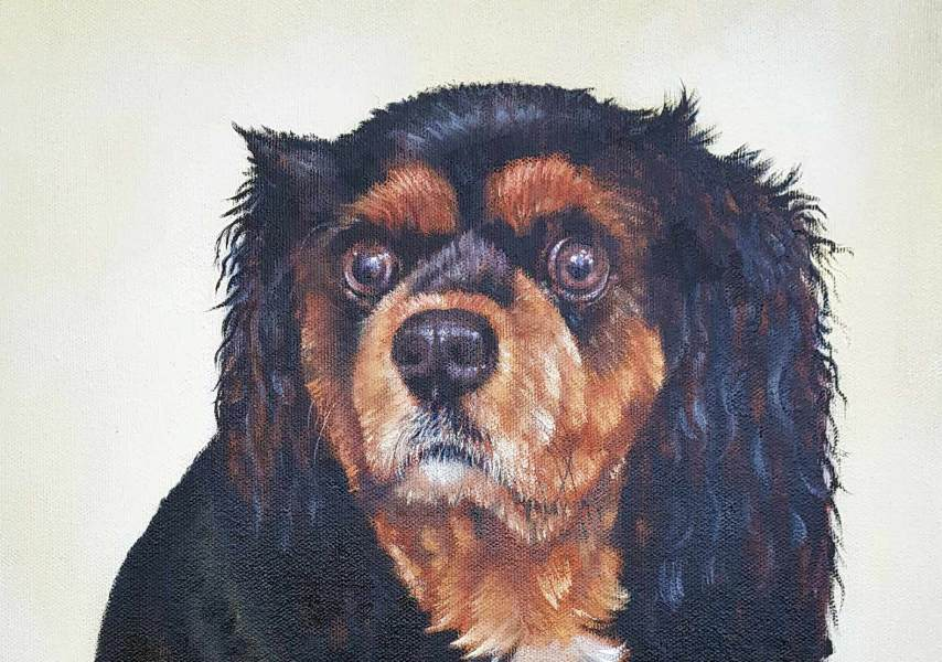 Leo - Pet Portrait Painting